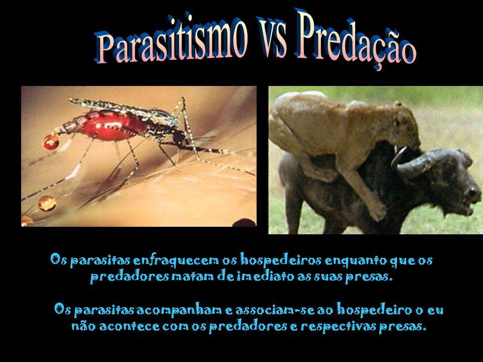 Parasitismo vs Predação