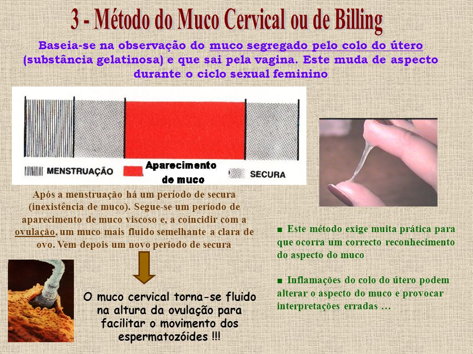 3 - Método do Muco Cervical ou de Billing