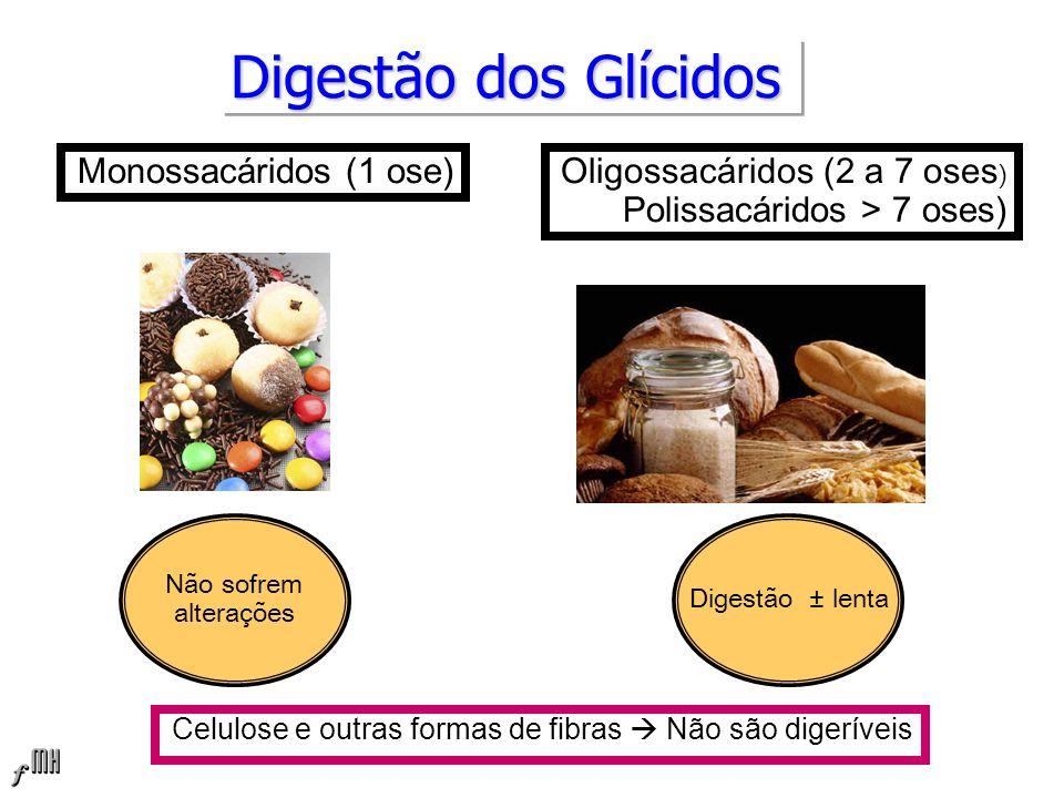 Digestão dos Glícidos Monossacáridos (1 ose)