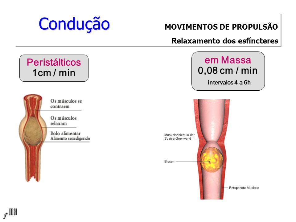 Condução MOVIMENTOS DE PROPULSÃO Relaxamento dos esfíncteres