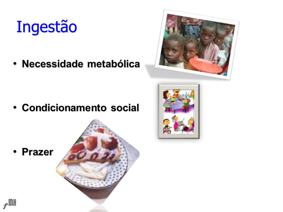 Ingestão Necessidade metabólica Condicionamento social Prazer