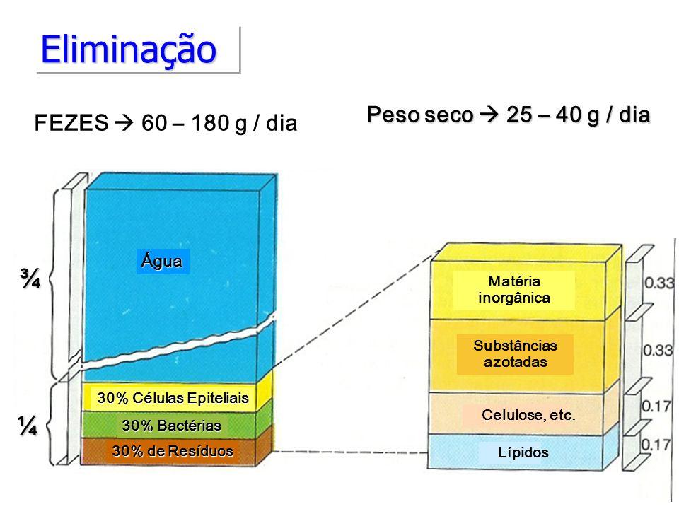 Eliminação ¾ ¼ Fezes Côr Peso seco  25 – 40 g / dia