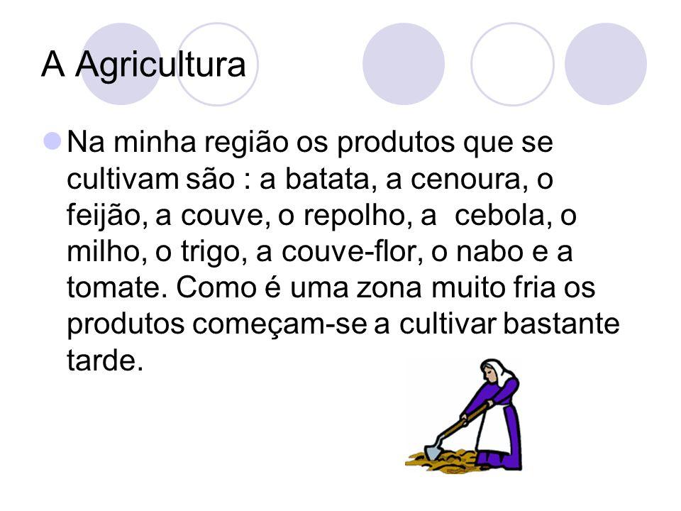 A Agricultura