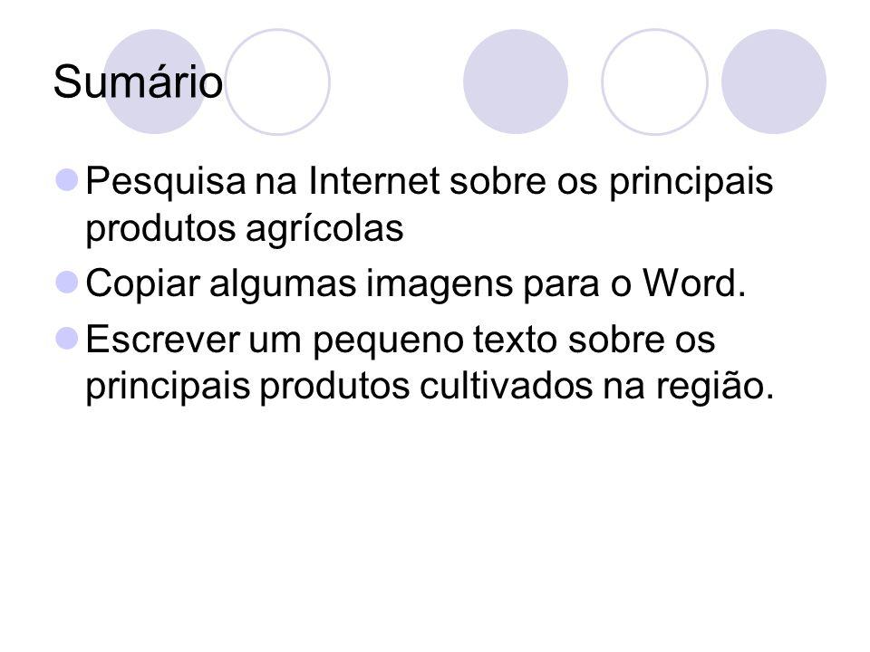 Sumário Pesquisa na Internet sobre os principais produtos agrícolas