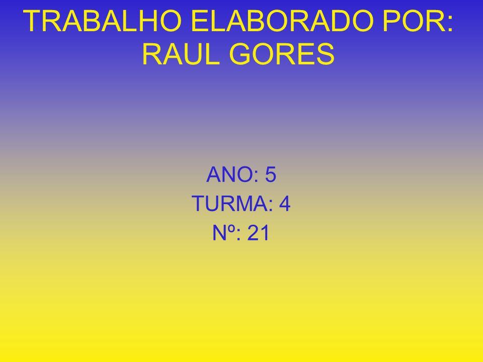 TRABALHO ELABORADO POR: RAUL GORES