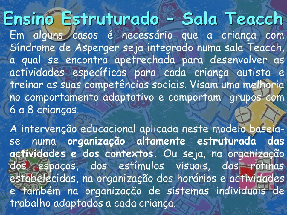 Ensino Estruturado – Sala Teacch