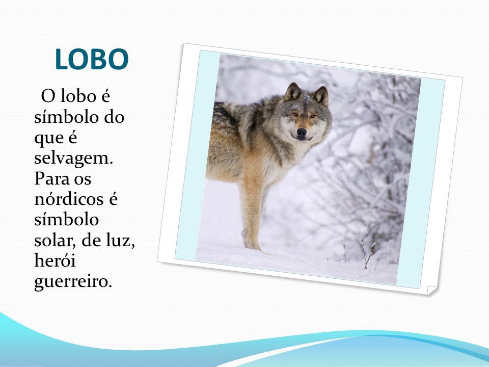 LOBO O lobo é símbolo do que é selvagem.