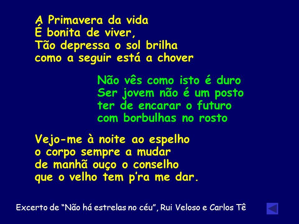 Excerto de Não há estrelas no céu , Rui Veloso e Carlos Tê