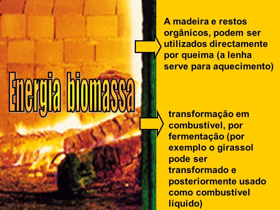 A madeira e restos orgânicos, podem ser utilizados directamente por queima (a lenha serve para aquecimento)