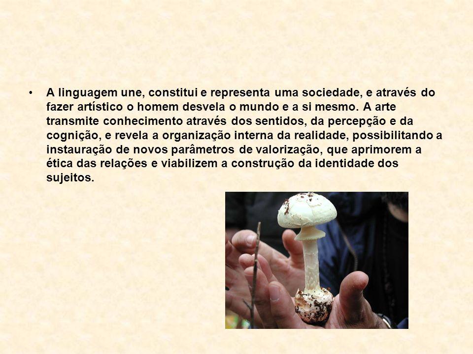 A linguagem une, constitui e representa uma sociedade, e através do fazer artístico o homem desvela o mundo e a si mesmo.