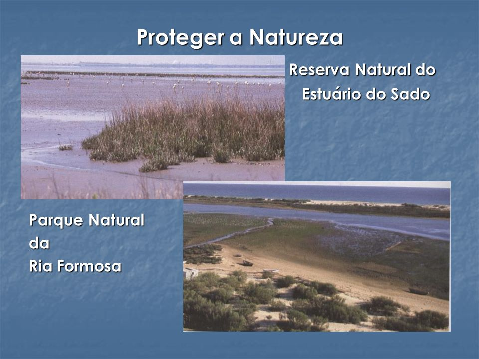 Proteger a Natureza Reserva Natural do