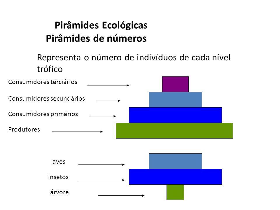 Pirâmides Ecológicas Pirâmides de números