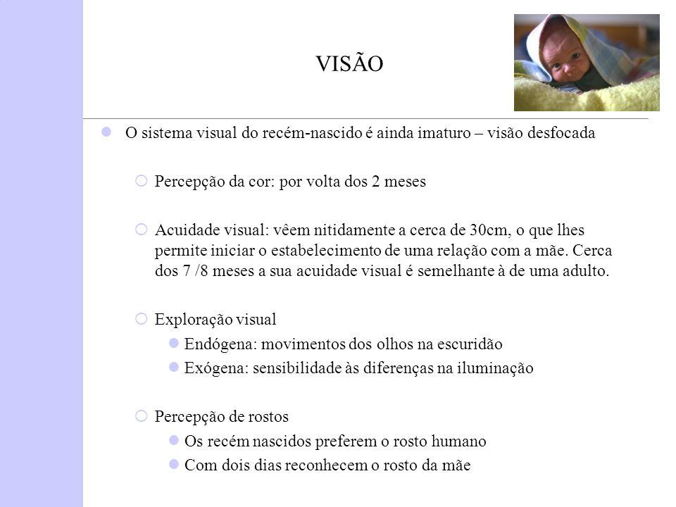 VISÃO O sistema visual do recém-nascido é ainda imaturo – visão desfocada. Percepção da cor: por volta dos 2 meses.