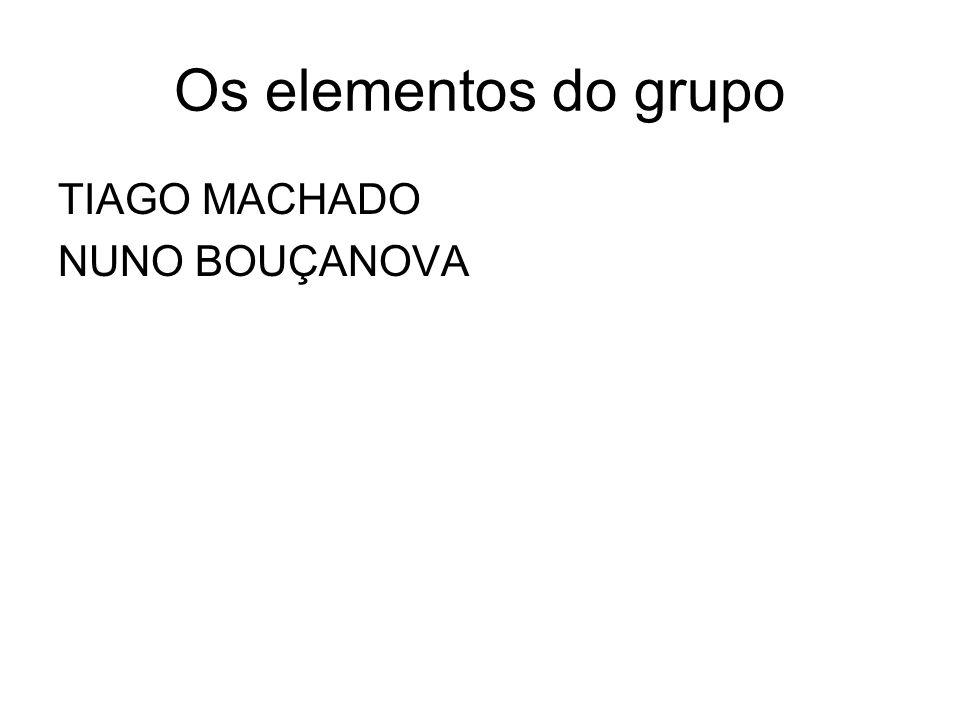 Os elementos do grupo TIAGO MACHADO NUNO BOUÇANOVA
