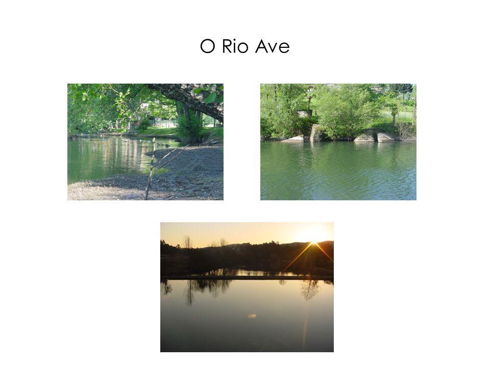 O Rio Ave