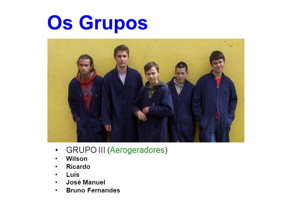 Os Grupos GRUPO III (Aerogeradores) Wilson Ricardo Luís José Manuel