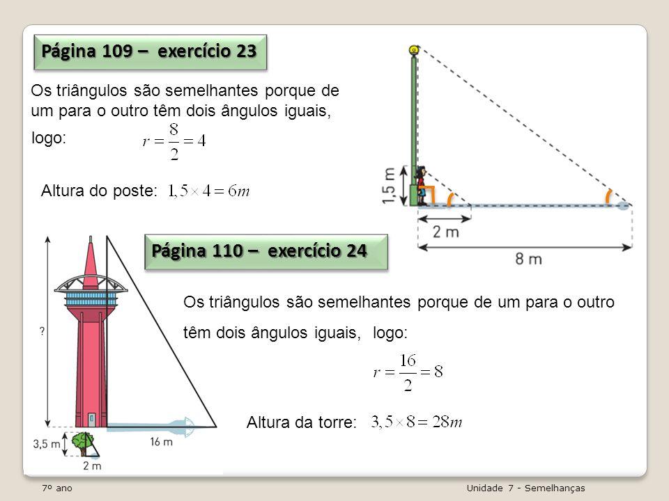 Página 109 – exercício 23 Página 110 – exercício 24