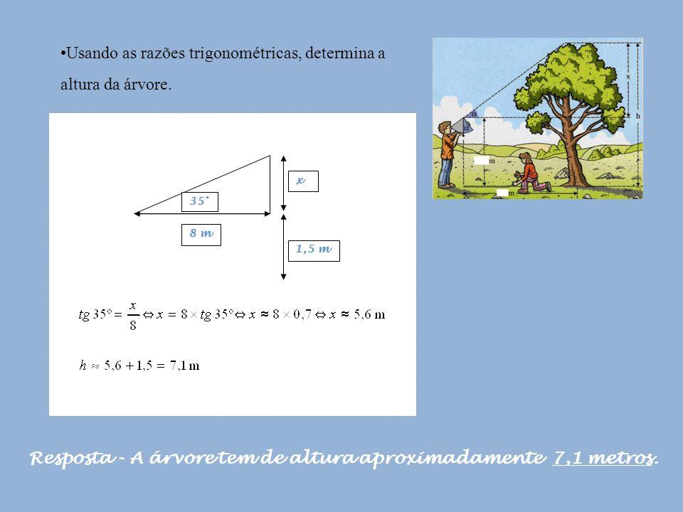 Usando as razões trigonométricas, determina a altura da árvore.