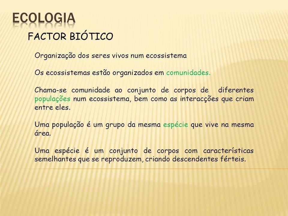 ecologia FACTOR BIÓTICO Organização dos seres vivos num ecossistema