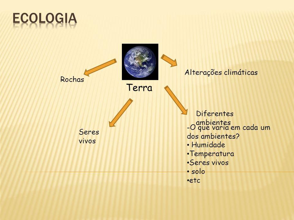ecologia Terra Alterações climáticas Rochas Diferentes ambientes