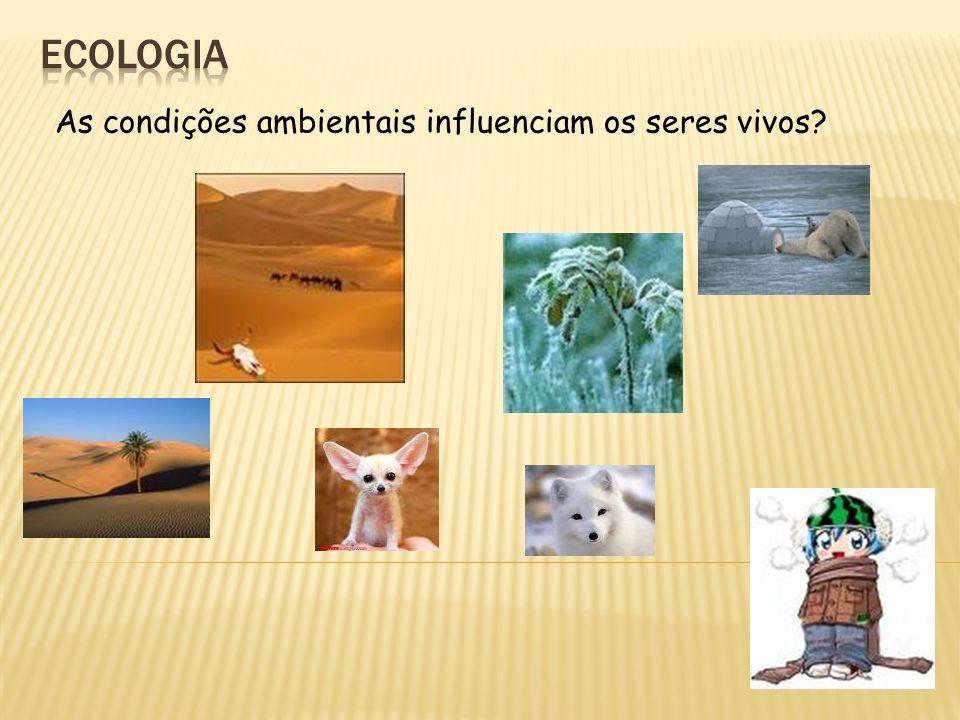 Ecologia As condições ambientais influenciam os seres vivos