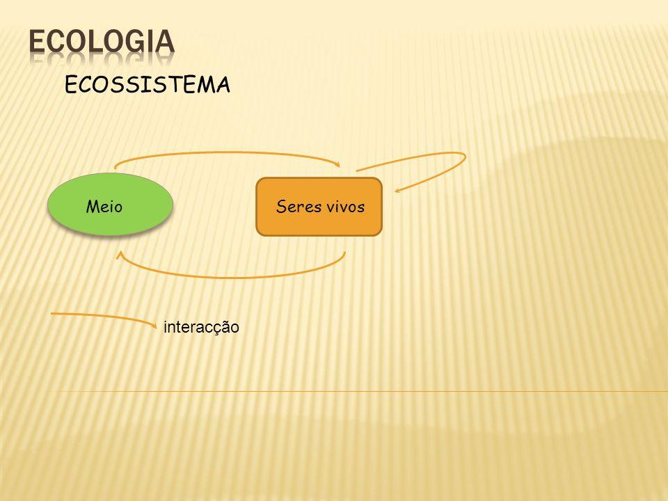ecologia ECOSSISTEMA Meio Seres vivos interacção