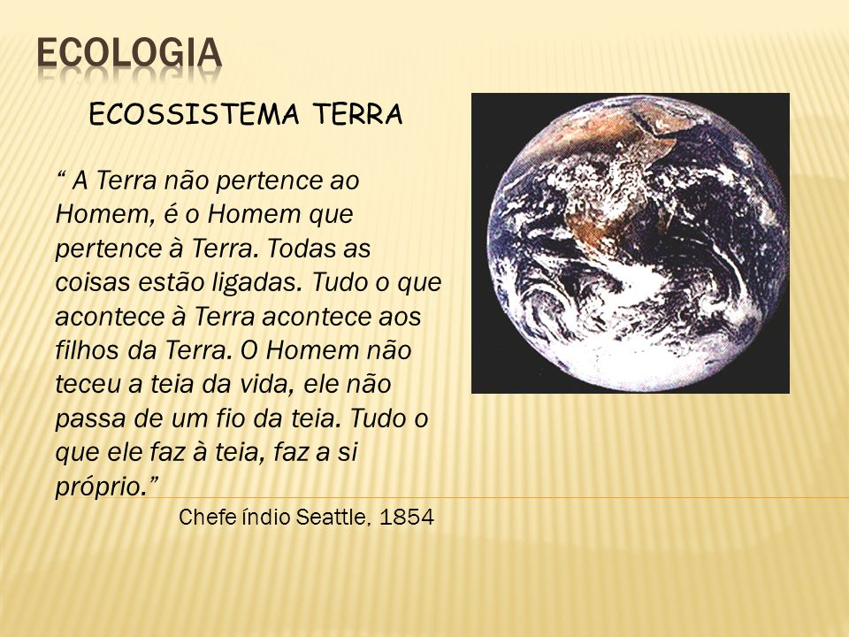 ecologia ECOSSISTEMA TERRA