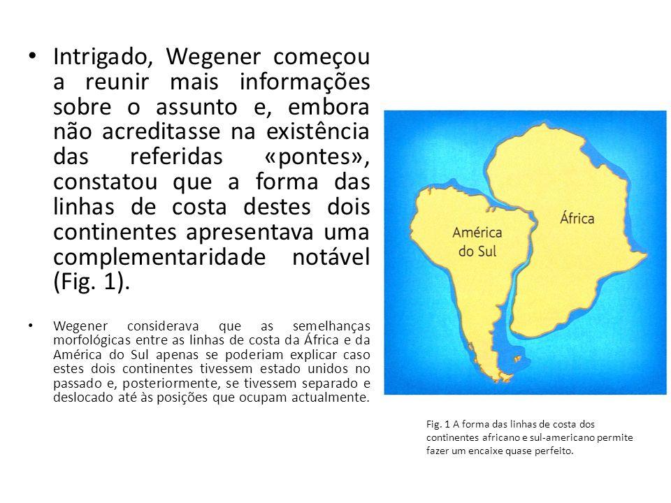 Intrigado, Wegener começou a reunir mais informações sobre o assunto e, embora não acreditasse na existência das referidas «pontes», constatou que a forma das linhas de costa destes dois continentes apresentava uma complementaridade notável (Fig. 1).