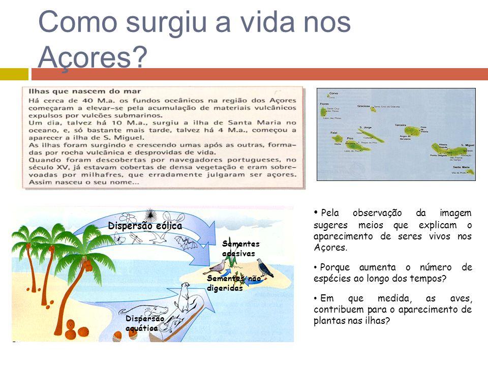 Como surgiu a vida nos Açores