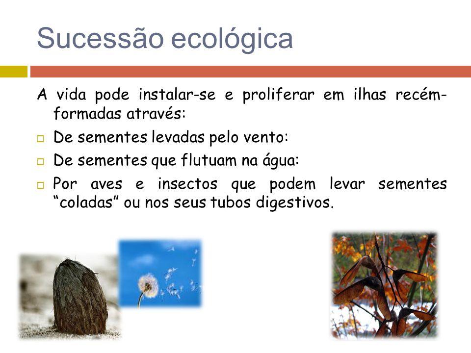 Sucessão ecológica A vida pode instalar-se e proliferar em ilhas recém- formadas através: De sementes levadas pelo vento: