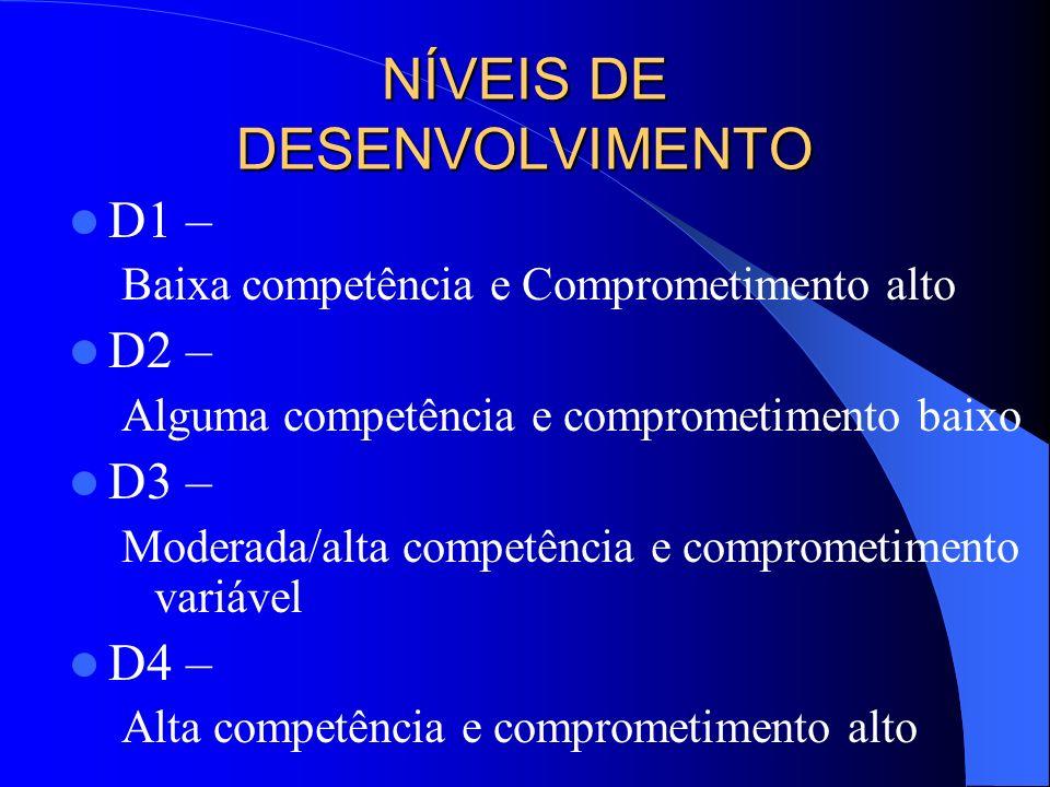 NÍVEIS DE DESENVOLVIMENTO