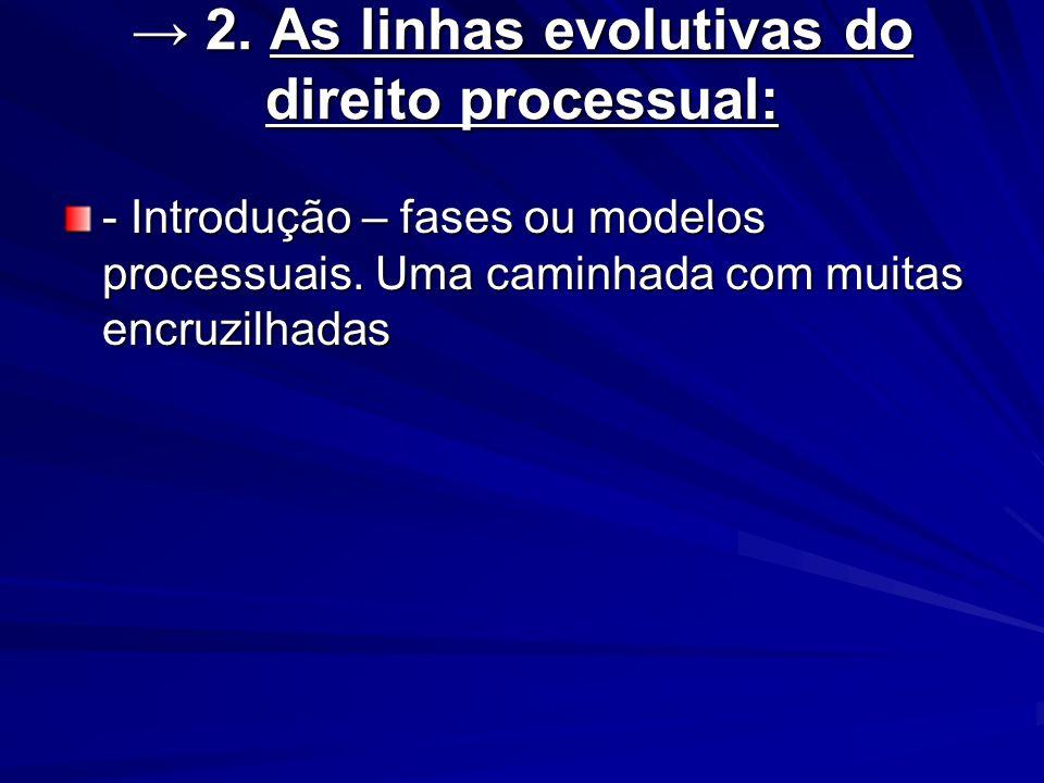 → 2. As linhas evolutivas do direito processual:
