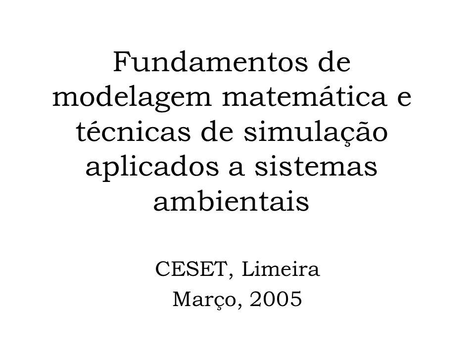 Fundamentos de modelagem matemática e técnicas de simulação aplicados a sistemas ambientais