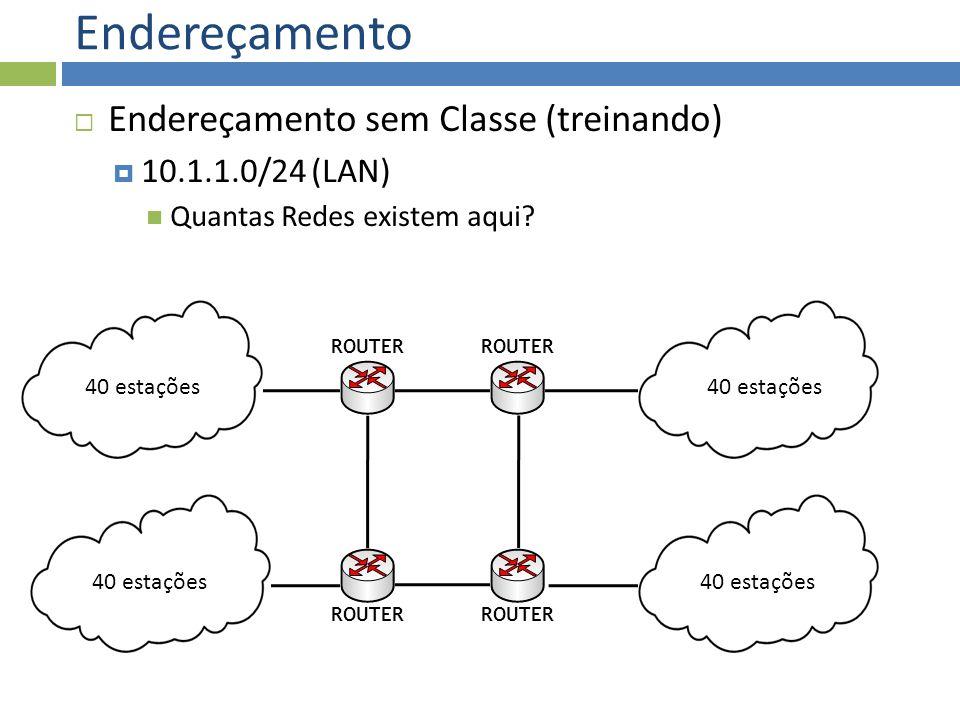 Endereçamento Endereçamento sem Classe (treinando) 10.1.1.0/24 (LAN)