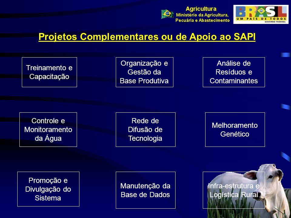 Projetos Complementares ou de Apoio ao SAPI