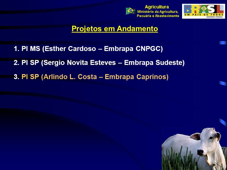 Projetos em Andamento PI MS (Esther Cardoso – Embrapa CNPGC)