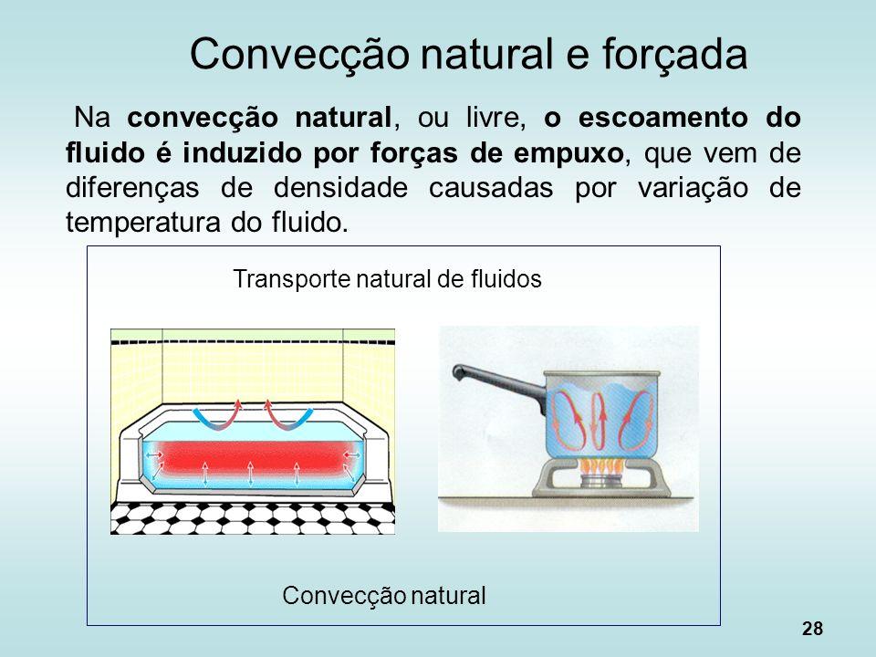 Convecção natural e forçada