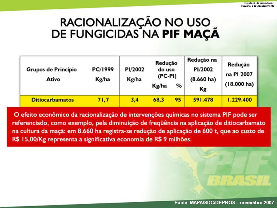 Fonte: MAPA/SDC/DEPROS – novembro 2007