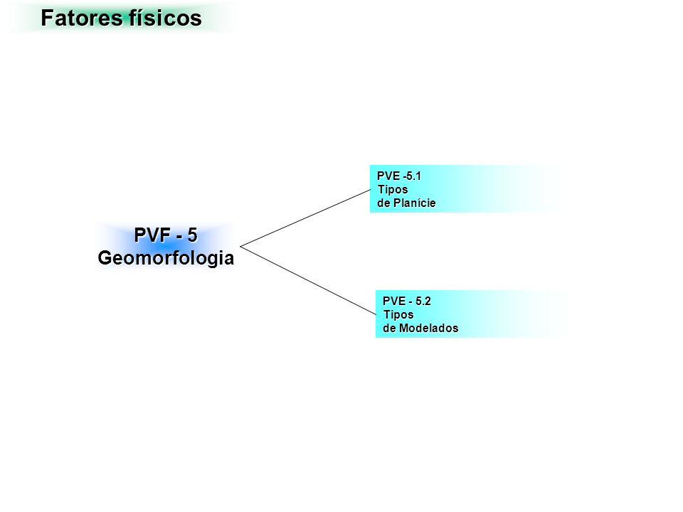 Fatores físicos PVF - 5 Geomorfologia PVE -5.1 Tipos de Planície