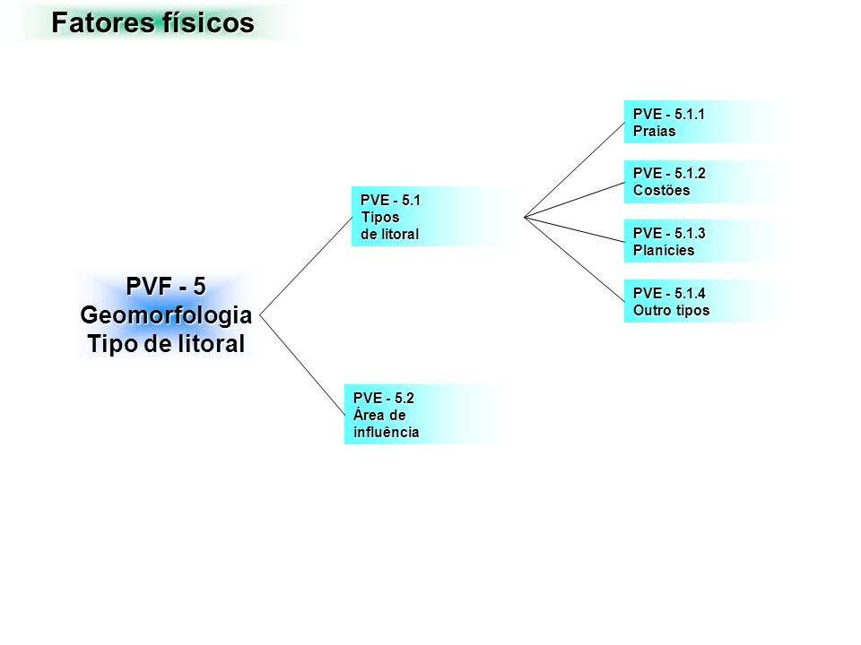 Fatores físicos PVF - 5 Geomorfologia Tipo de litoral PVE - 5.1.1