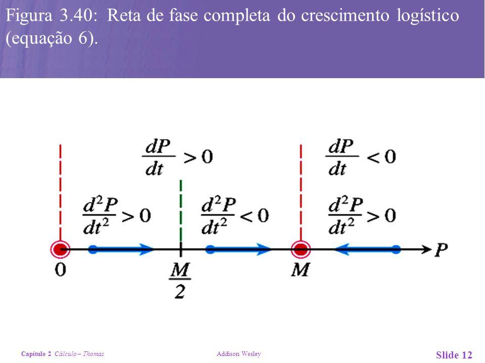 Figura 3.40: Reta de fase completa do crescimento logístico (equação 6).