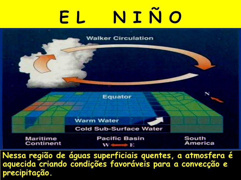 E L N I Ñ O Nessa região de águas superficiais quentes, a atmosfera é aquecida criando condições favoráveis para a convecção e precipitação.