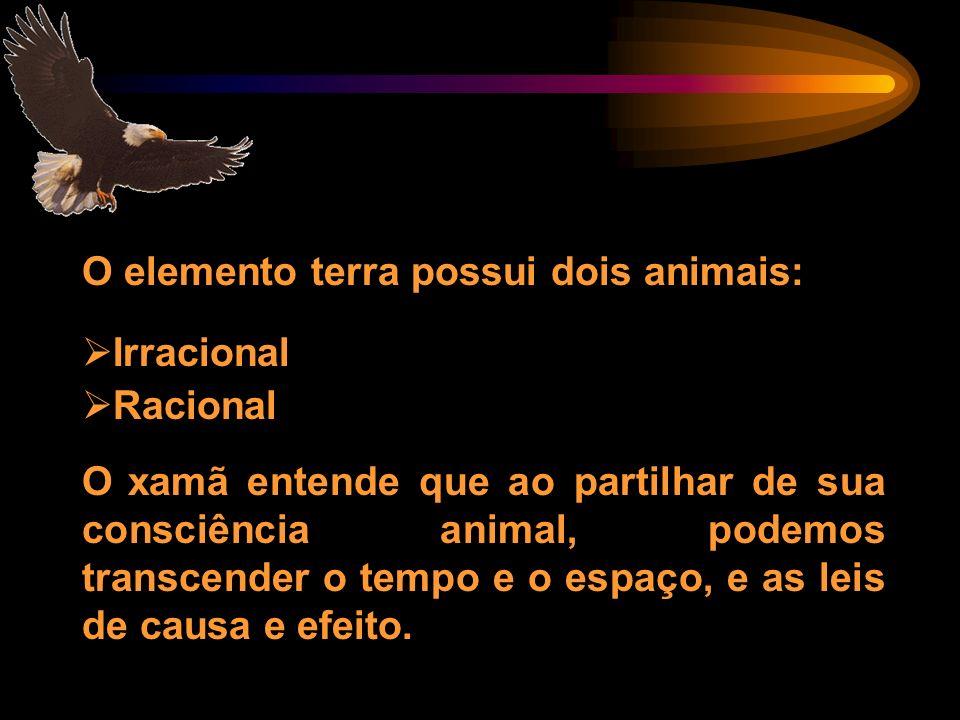 O elemento terra possui dois animais: