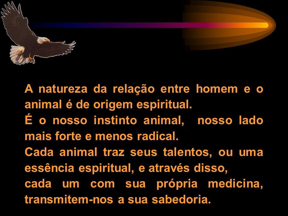 A natureza da relação entre homem e o animal é de origem espiritual.