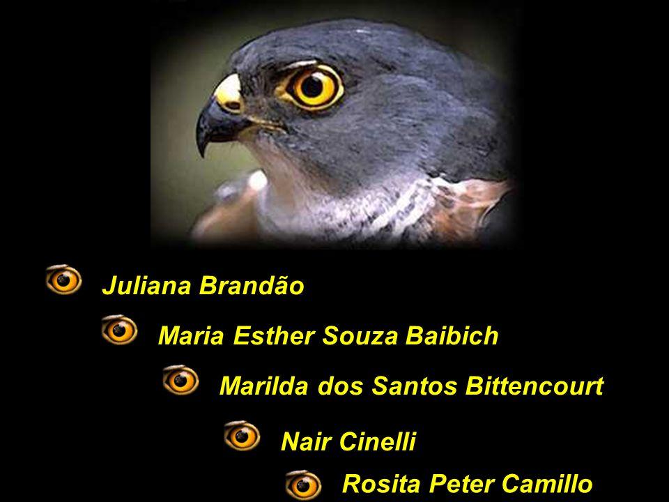 Juliana Brandão Maria Esther Souza Baibich. Marilda dos Santos Bittencourt.