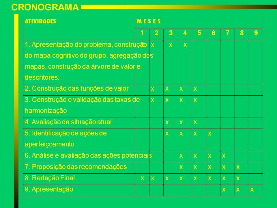 CRONOGRAMA ATIVIDADES M E S E S 1 2 3 4 5 6 7 8 9