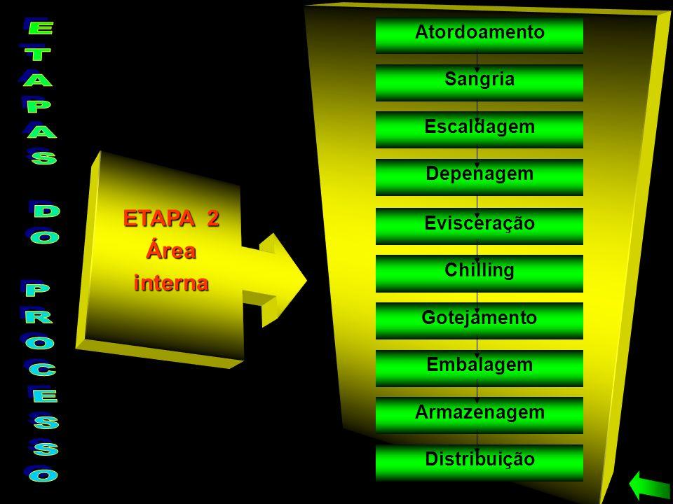 ETAPAS DO PROCESSO ETAPA 2 Área interna Atordoamento Sangria