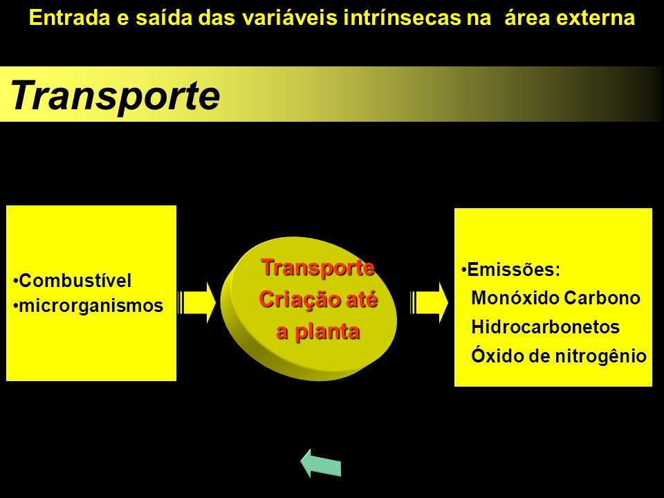 Transporte Entrada e saída das variáveis intrínsecas na área externa