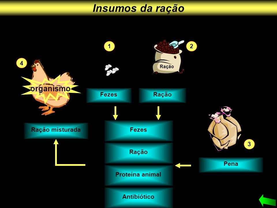 Insumos da ração organismo 1 2 4 Fezes Ração Fezes Ração misturada 3