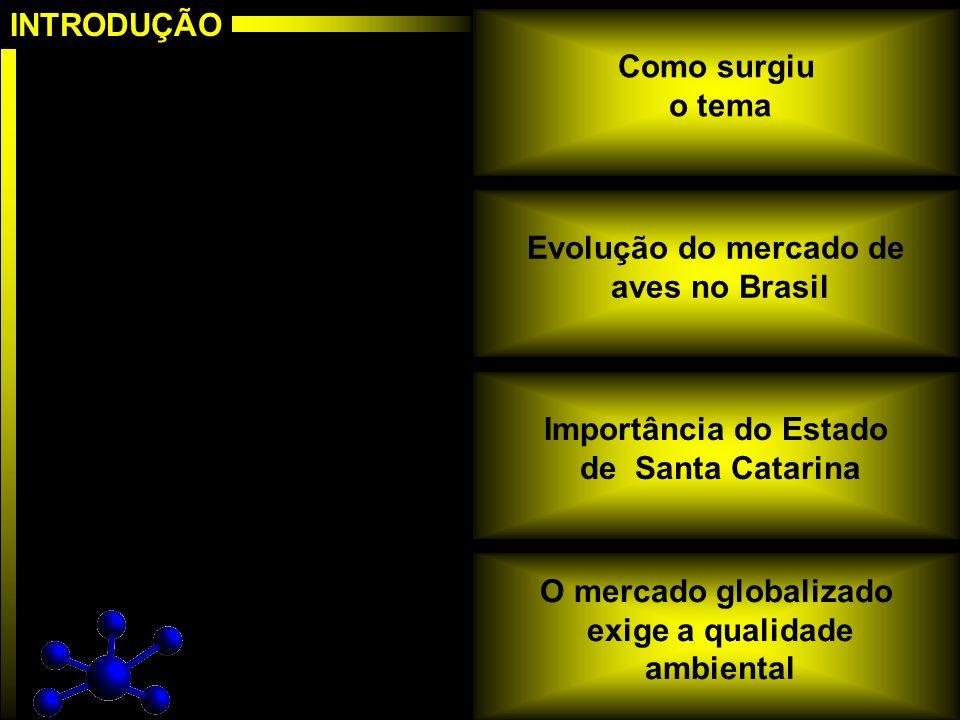 INTRODUÇÃO Como surgiu. o tema. Evolução do mercado de. aves no Brasil. Importância do Estado. de Santa Catarina.